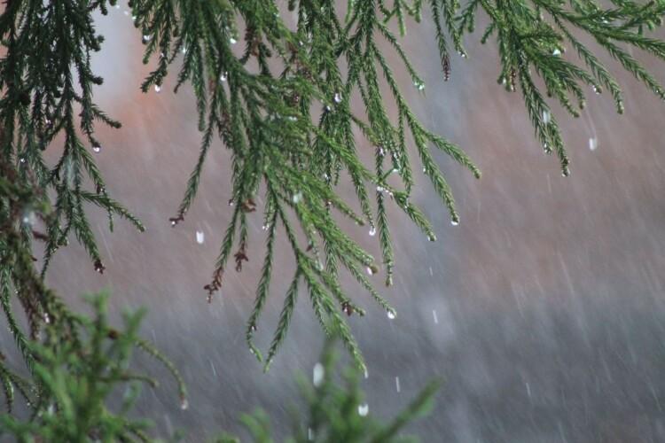 Погода на понеділок, 17 травня: дощитиме, але це добре