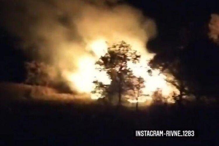 Поблизу Рівного спалахнула пожежа