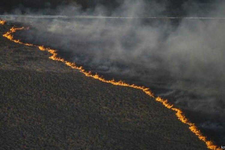 Британія пропонує Україні допомогу в ліквідації пожеж у Зоні відчуження