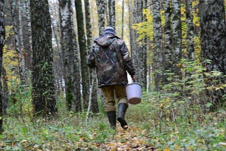Як на Волині шукали заблукалого грибника