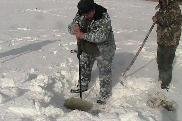 На волинському озері Рогізне рятують карасів та щук від задухи
