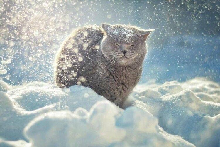 На Різдво вдарять морози до -14 градусів
