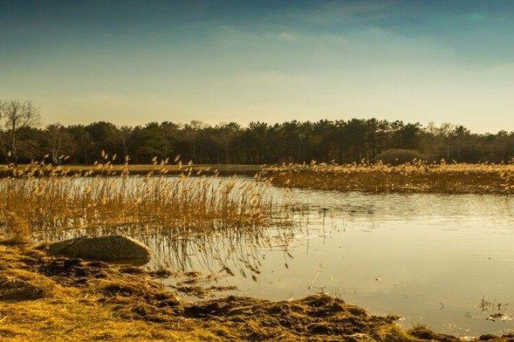 Українка в Польщі двічі хотіла втопитися на одному й тому ж озері