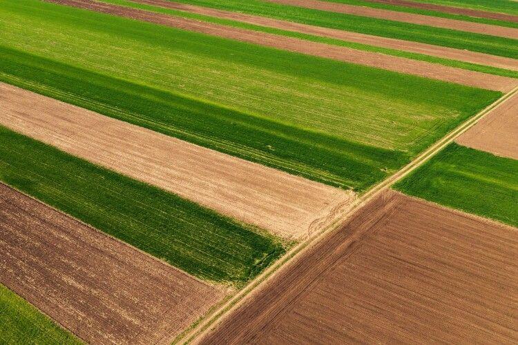 Двадцять сім з половиною тисяч земельних ділянок зареєстрували за півроку на Волині