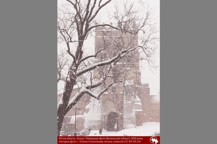 Найкращою світлиною Волині на конкурсі «Вікі любить пам'ятки» стало фото В'їзної вежі замку Любарта