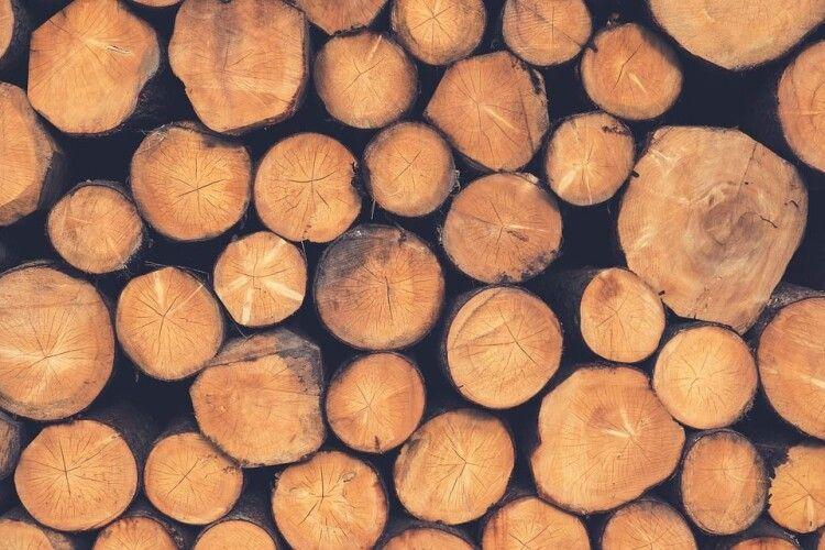 На Волині попався чоловік із повним причепом незаконно зрубаної деревини