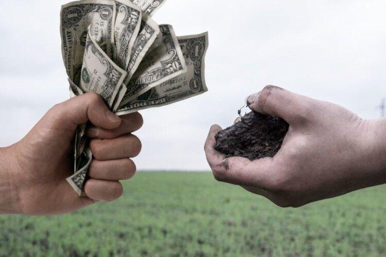 Депутати «земельної» комісії у Володимирі-Волинському продають один одному землю