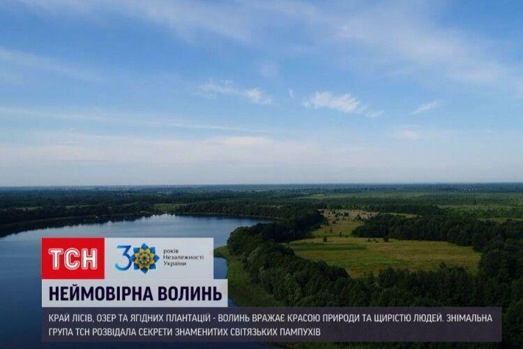 Світязькі пончики готують на самогонці – показали київські журналісти (Відео)