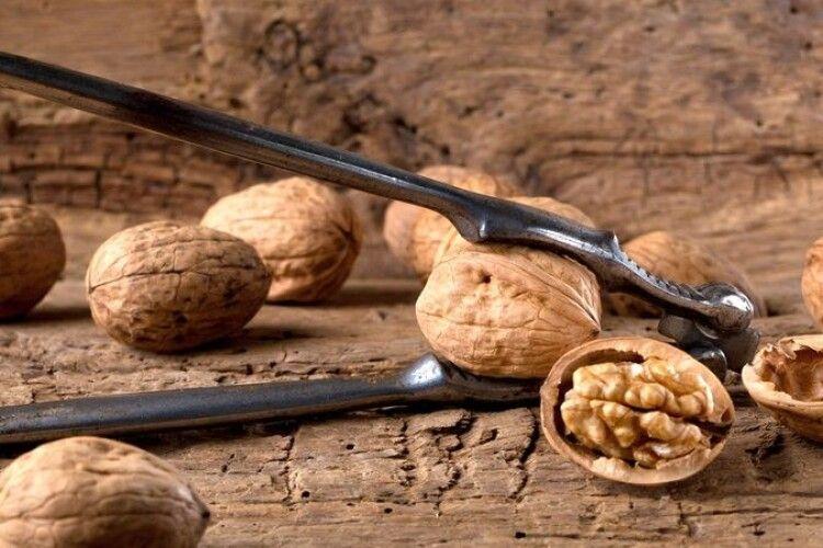 Садіть горіхи – будете мати прибуток