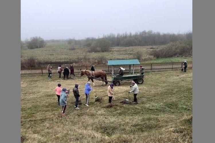 У громаді на Волині провели толоку (Фото)