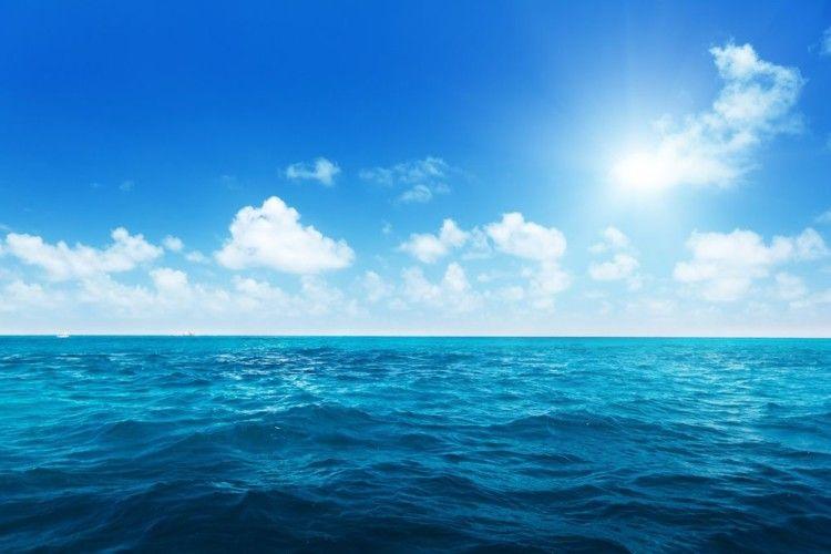 В Індійському океані врятували поляка, який більше півроку дрейфував у човні з кішкою