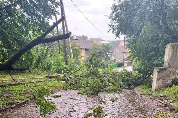 На Волині через негоду без світла 3 населені пункти, впали 16 дерев, зірвані дахи