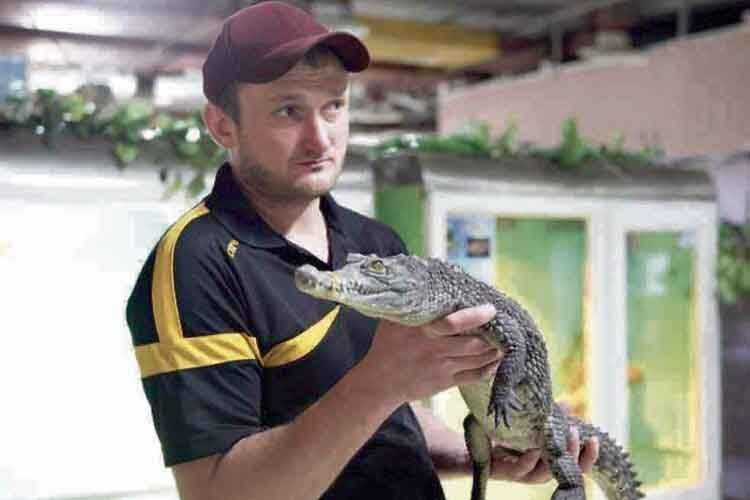 Крокодилів розводять на… Вінниччині (Фото)