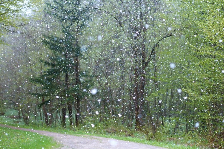 Погода на понеділок, 22 березня: може і справді початок весни варто перенести?