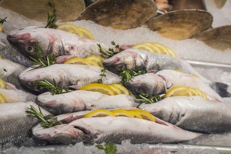 Продають рибний завод за понад 15 млн гривень