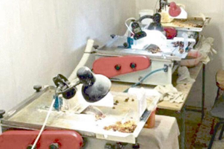 На Рівненщині бурштиновий бізнес контролює турок