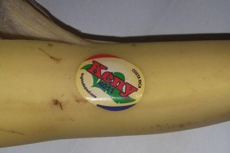 Рівненський науковець розповів, як правильно вибрати банани