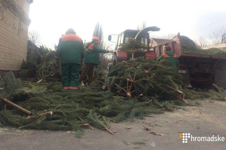 У Києві переробляють новорічні ялинки