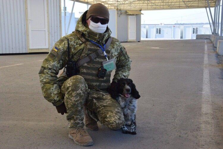 Чотирилапі охоронці кордону під час карантину тренуються ще більше, ніж зазвичай (Фото, відео)