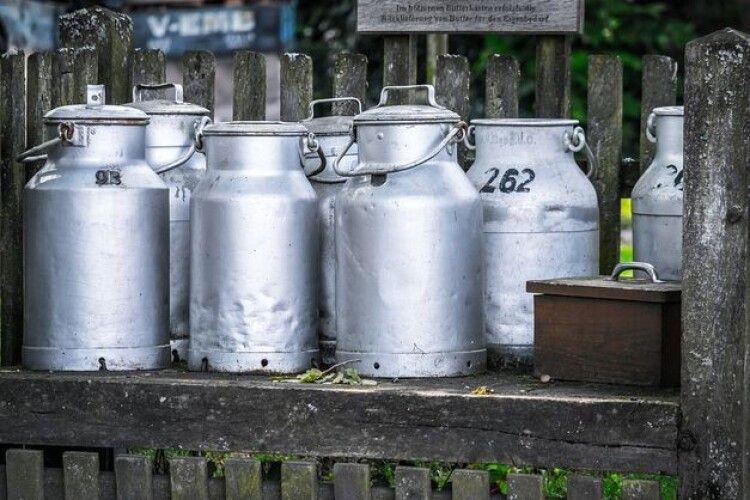Запровадження заборони на закупівлю молока в населення відкладуть