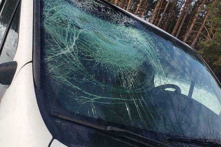 На трасі Луцьк-Рівне трапилася суто зимова ДТП: бус розтрощила крижана брила, яка злетіла з даху зустрічної вантажівки (Фото)