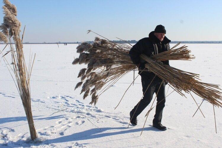 На озері Люб'язь природоохоронці рятують рибу від задухи та браконьєрів (Фото)