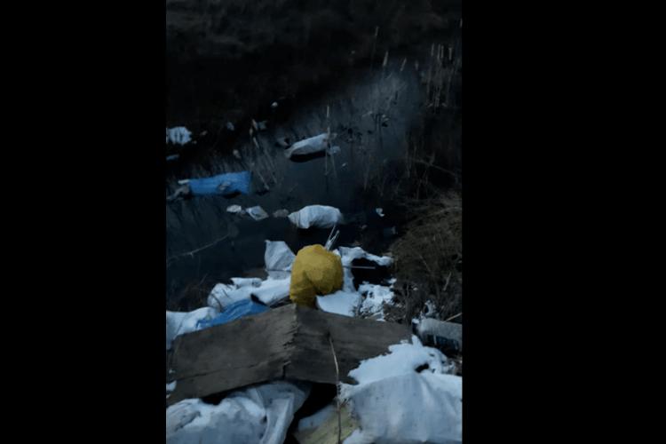 Звозять тракторами: берег Стиру з боку Рованців потопає у смітті (Відео)