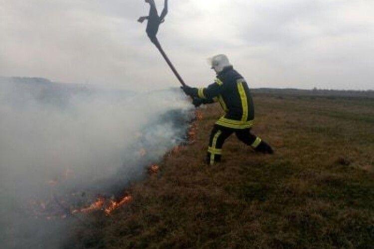 На Волині зі 141 пожежі за тиждень майже сотня трапилася в екосистемах. Відео