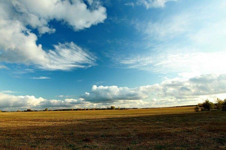 На Волині підприємство звільнило незаконно зайняту землю вартістю понад 153 мільйонів гривень