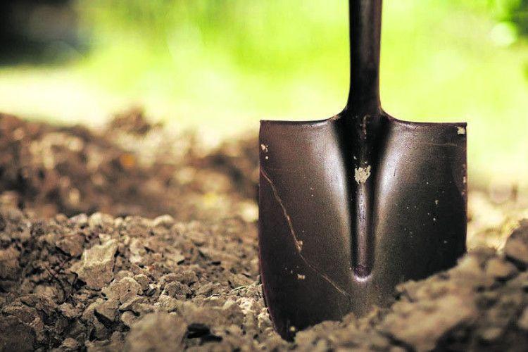 Готуємо ґрунт для розсади