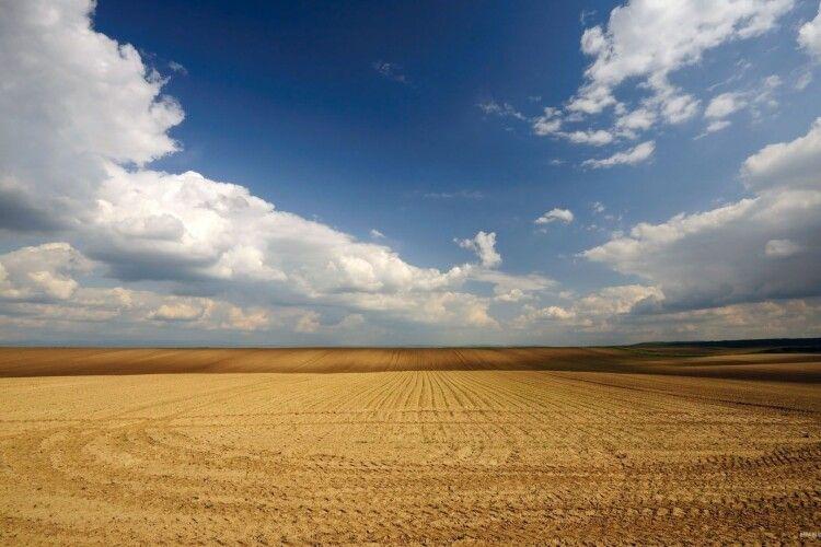 У полі на Рівненщині рятували жінку (Фото)