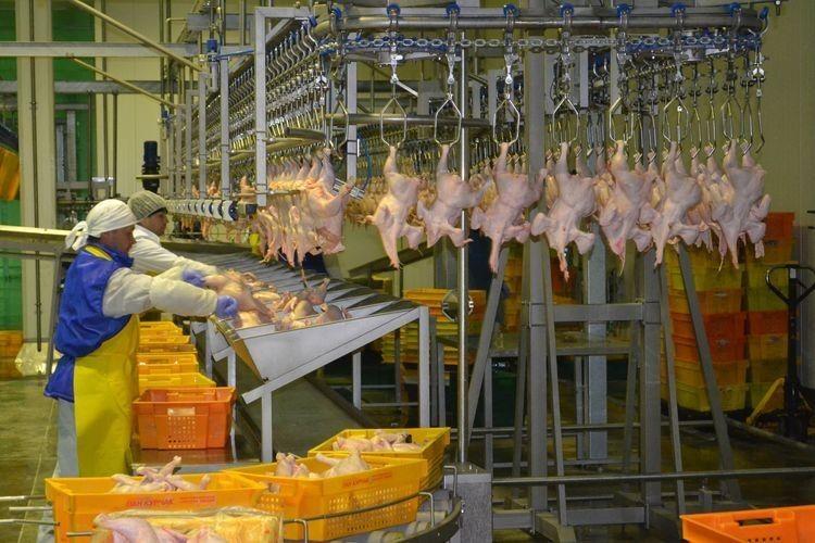 У 2017 р. збільшилося виробництво лише одного виду м'яса