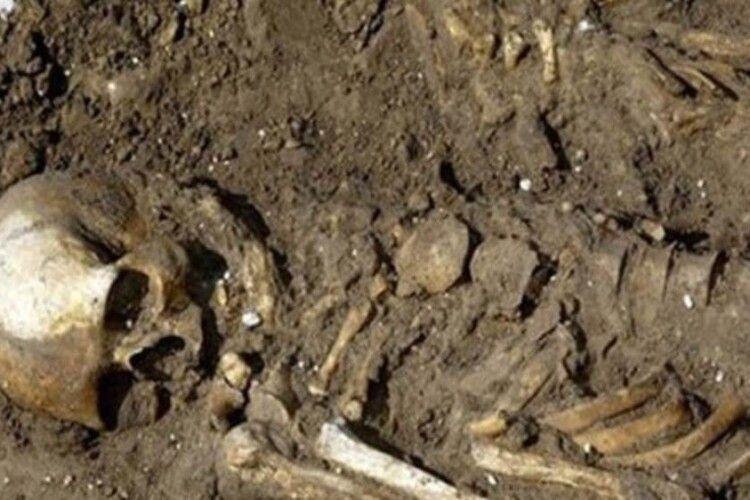 На Волині у різних місцях викопали… скелет і череп