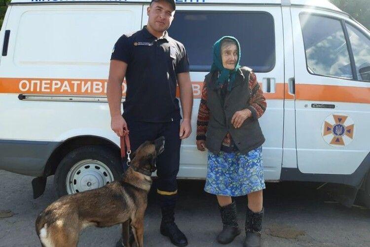 Службові собаки розшукали зниклу пенсіонерку