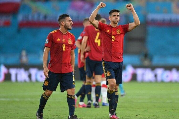 Волинський кріль-прогнозист зробив ставку на матч Словаччина - Іспанія (Відео, анонс, прогноз)