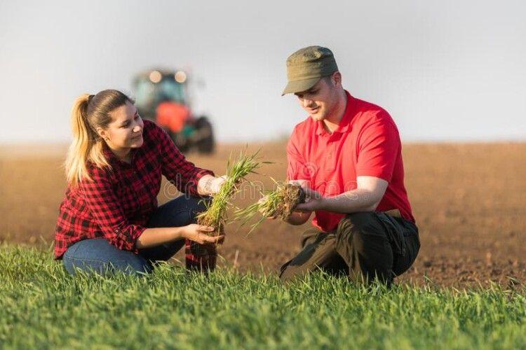На Поліссі фермери до 35 років отримають допомогу від держави