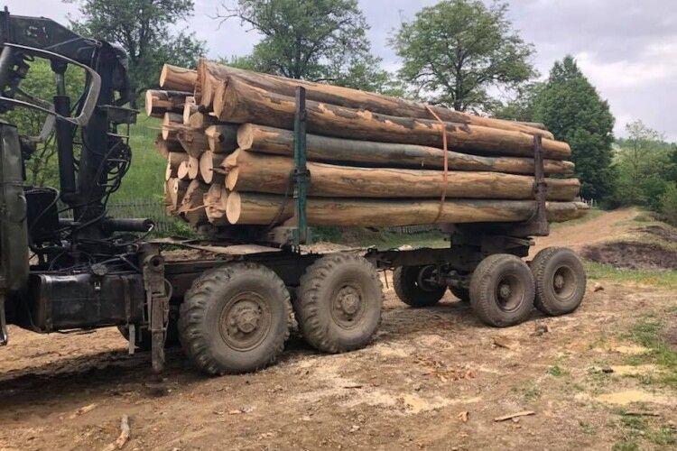 У«чорних лісорубів» вилучили автомобіль таобладнання