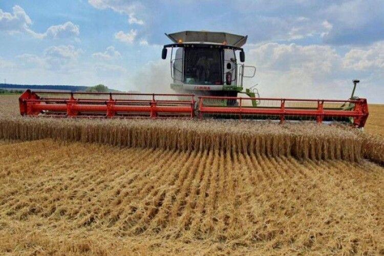 На Волині закінчилися жнива зернових