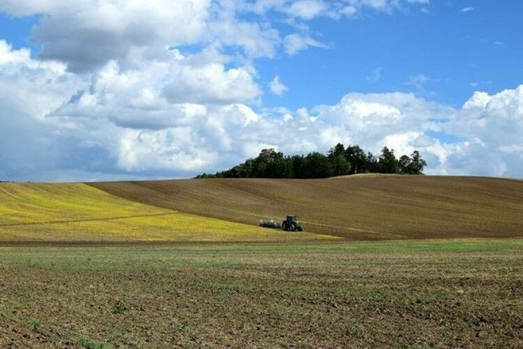 За яких умов в українців зможуть конфісковувати земельні ділянки