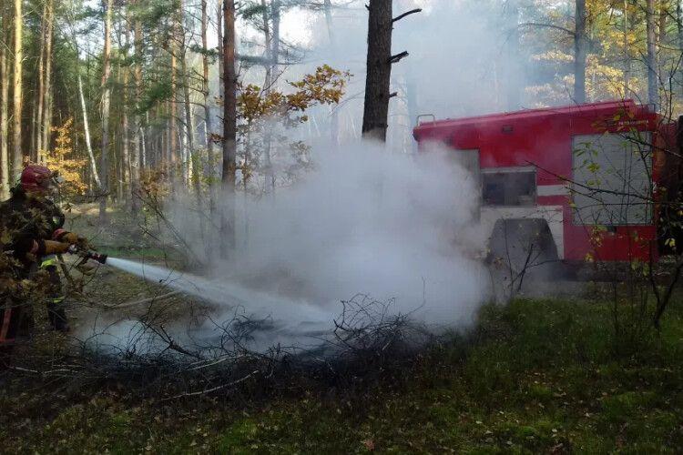 Лісівники та рятувальники гасили пожежу на Камінь-Каширщині
