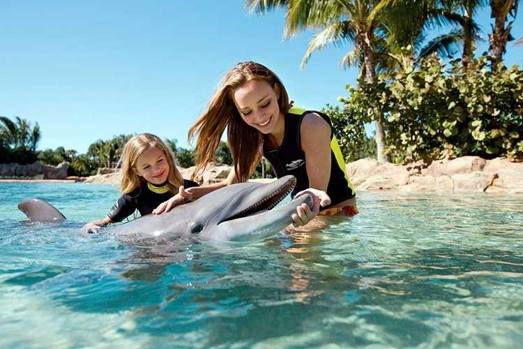 На Землі є люди з очима… дельфінів