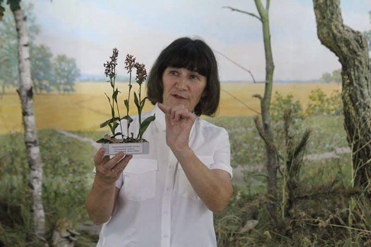 Були продемонстровані різні за призначенням гербарії із фондів Волинського краєзнавчого музею.