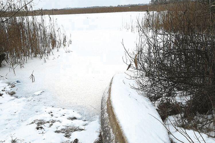 Давно Прип'ять не вкривалась льодом.