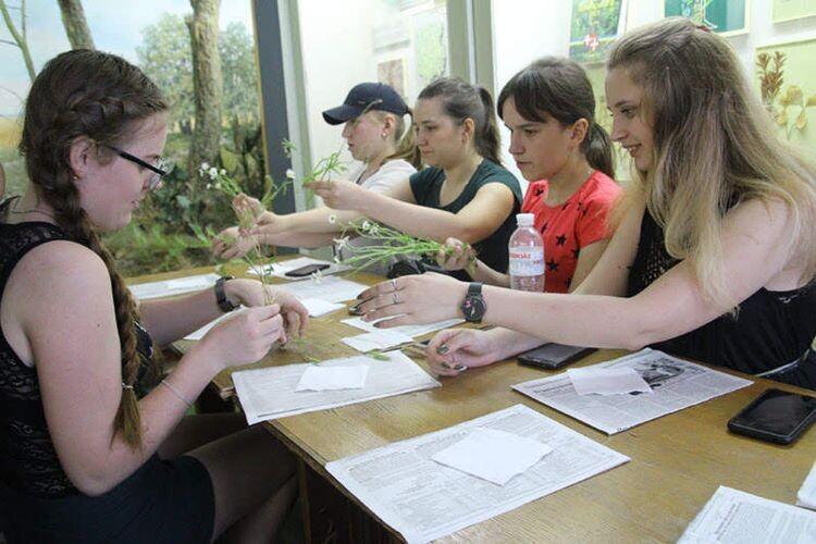 У практичній частині ботанічного уроку студенти вчились мистецтву гербаризації рослин, використовуючи спеціальне обладнання.