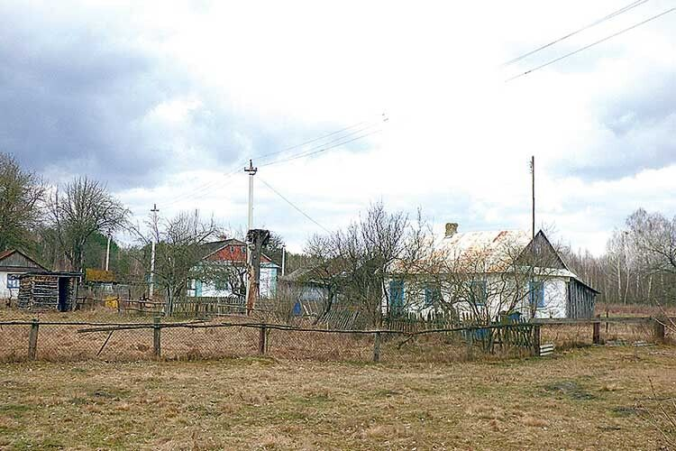 Село весняної пори оживає.