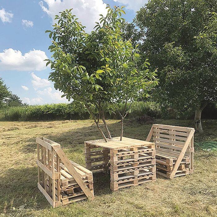 А вдома у стіл в саду «вмонтоване» живе дерево – горіх скоро порадує плодами.