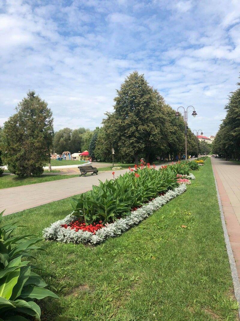 Центральна алея парку.