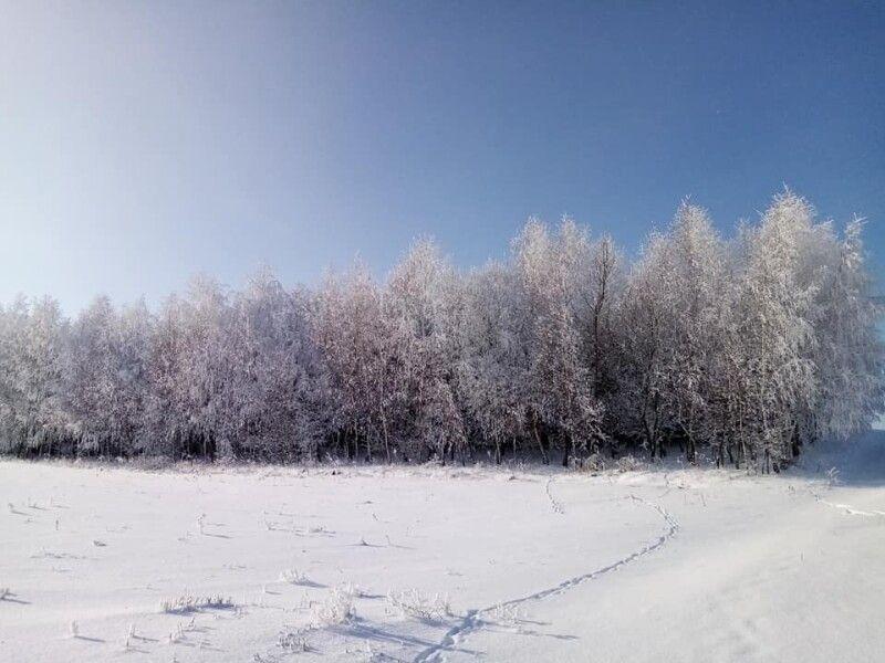Зимові Пустомити.