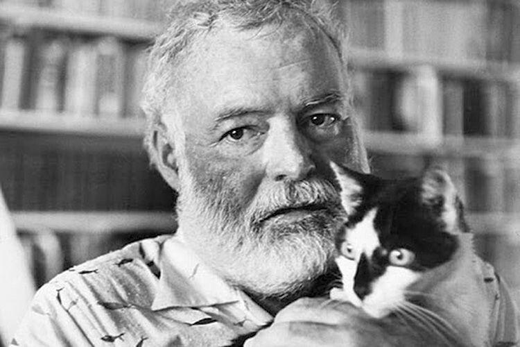 У його будинку  в Кі-Вест (штат Флорида) було чимало котів, яких він називав іменами знаменитостей: Гарі Трумен, Софі Лорен, Чарлі Чаплін, Пабло Пікассо...  А один «вусань» на кличку Сніжок (Snowbsll) мав на кожній лапі зайвий палець.