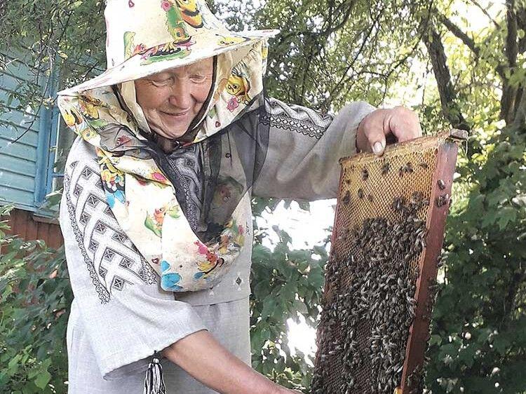 Погода гарна, то комахи принесли багато меду.